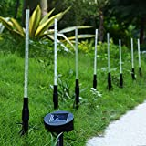 Homeleo 6Pack Solar Tube Lights Set Solar Powered LED Garden Stake Lights Acrylic Bubble Pathway Yard Stick Stake Light Set White