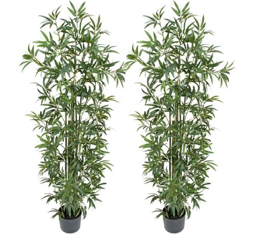 TWO Pre-Potted 6' Artificial Bamboo Trees with REAL BAMBOO TRUNKS by Arcadia Silk Plantation