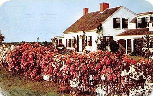 od Massachusetts Postcard ()