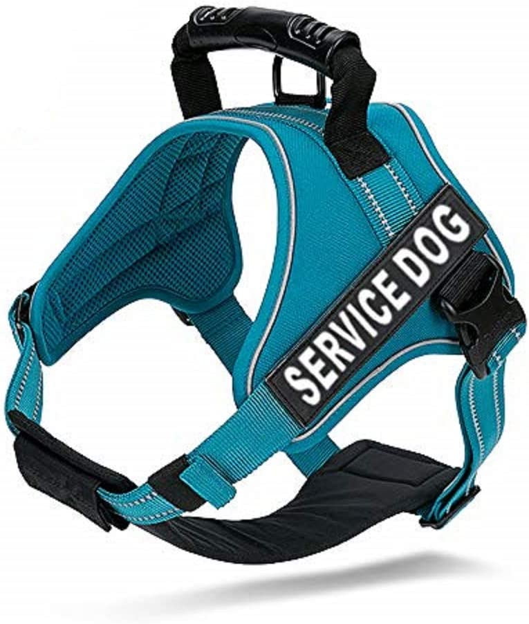Amazon Com Chai S Choice Service Dog Vest Harness Best Truelove Model With 2 Reflective Service Dog Patches And Sturdy Handle Matching Padded 3m Reflective Leash Available Large Blue Pet Supplies