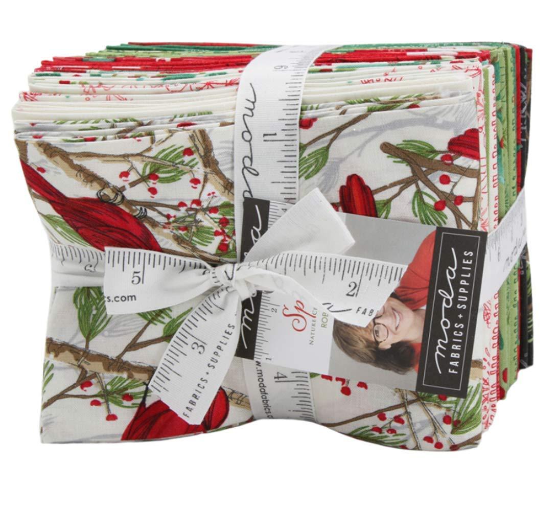 Splendid 22 Fat Quarter Bundle by Robin Pickens for Moda Fabrics by Moda Fabrics