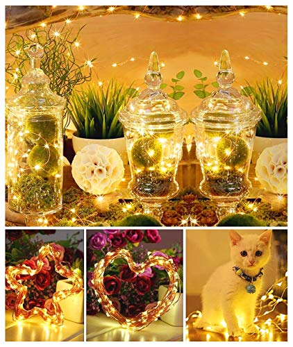 DeepDream 66ft 200 LEDs Fairy Light Battery Powered String Lights Copper Wire 8 Modes Twinkle, Remote Control with Timer… 4