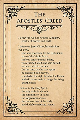 """Creed """"I Believe"""" Card Pack (Pkg of 25): What Christians Believe and Why (Creed Series)"""