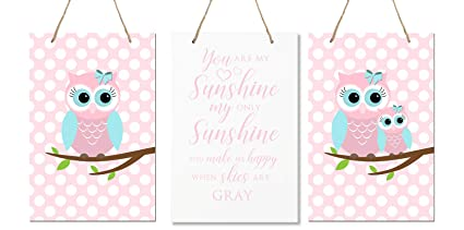 Amazon.com: LifeSong Milestones You are My Sunshine 3 Piece Owl ...