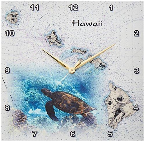 (3dRose DPP_204889_2 Print of Hawaiian Islands Chart with Sea Turtle Wall Clock, 13 by 13