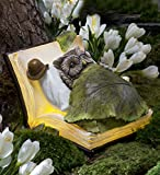 Outdoor Solar LED Lighted Owl Book Dreamer Figurine Detailed Resin Decorative Whimsical Animal Garden Art 8.5 L x 7 W x 5.5 H