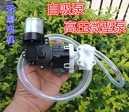 Diybigworld Disassemble the 12V brushless motor miniature high pressure pump self-priming piston diaphragm pump small pressure pump - High Pressure Piston Pumps