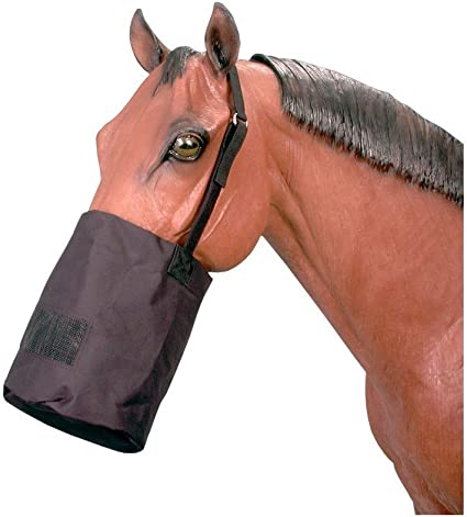 Tough One Deluxe Foal Small Pony Halter Royal Blue