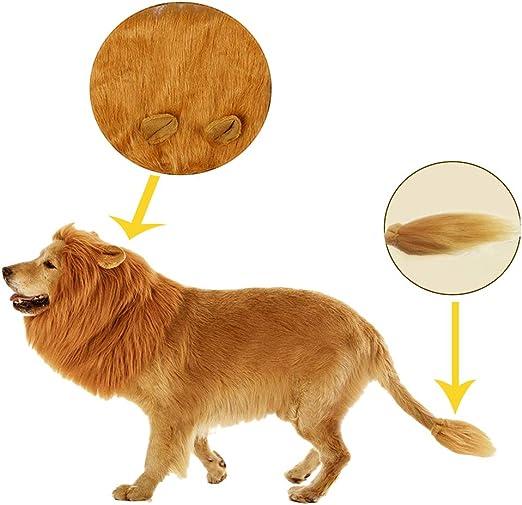 Oncpcare - Disfraz de león para Halloween, para hacer que tu perro sea rey león, peluca de melena de león, ajustable, lavable y cómodo: Amazon.es: Hogar