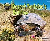 img - for Desert Tortoise's Burrow (Science Slam: The Hole Truth! Underground Animal Life) book / textbook / text book