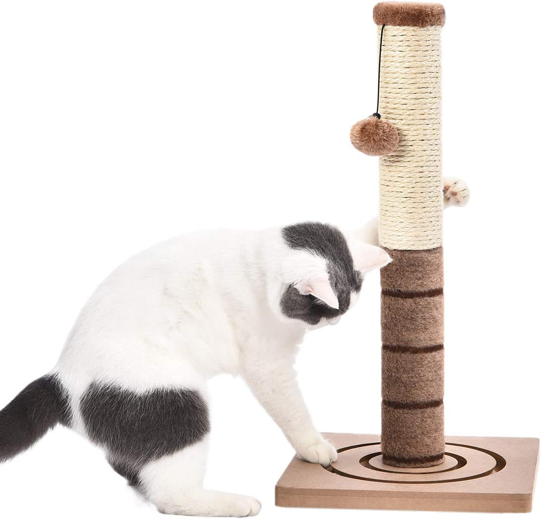 PAWZ Road Cat Scratching Post Cat Interactive Toys - Extra Post and Dangling Ball Included- 22 inches