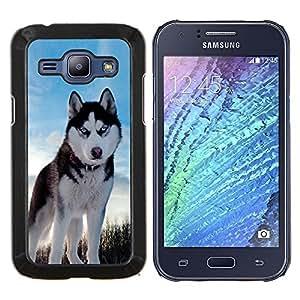 YiPhone /// Prima de resorte delgada de la cubierta del caso de Shell Armor - Husky Ojos azules brillantes del invierno del perro - Samsung Galaxy J1 J100