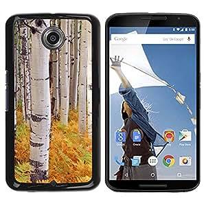 Paccase / SLIM PC / Aliminium Casa Carcasa Funda Case Cover para - Ferns Birch Trees Nature Yellow - Motorola NEXUS 6 / X / Moto X Pro