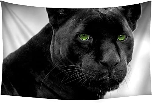 PUPBEAMO PRINTS Black Panther Animal – 15480 – Wall Tapestry Art for Home Decor Wall Hanging Tapestry Bedroom Living Room Dorm Decor 60×40 Inches