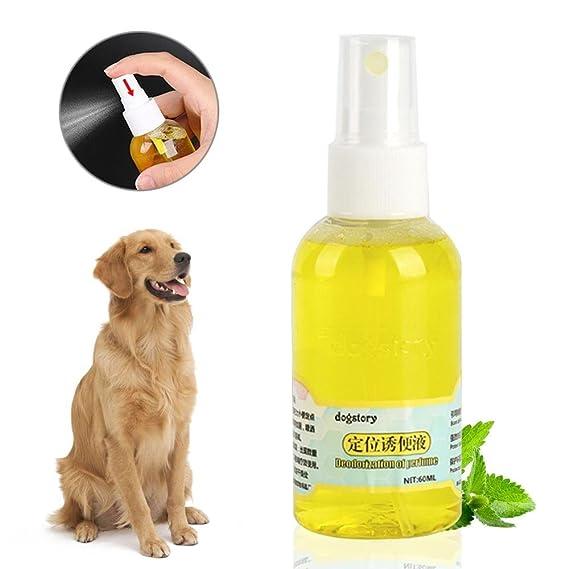 KOBWA - Espray de Entrenamiento para Cachorros, Atractivo, para Inodoro, Entrenamiento, Cachorros Seguros y eficaces (60 ML): Amazon.es: Productos para ...