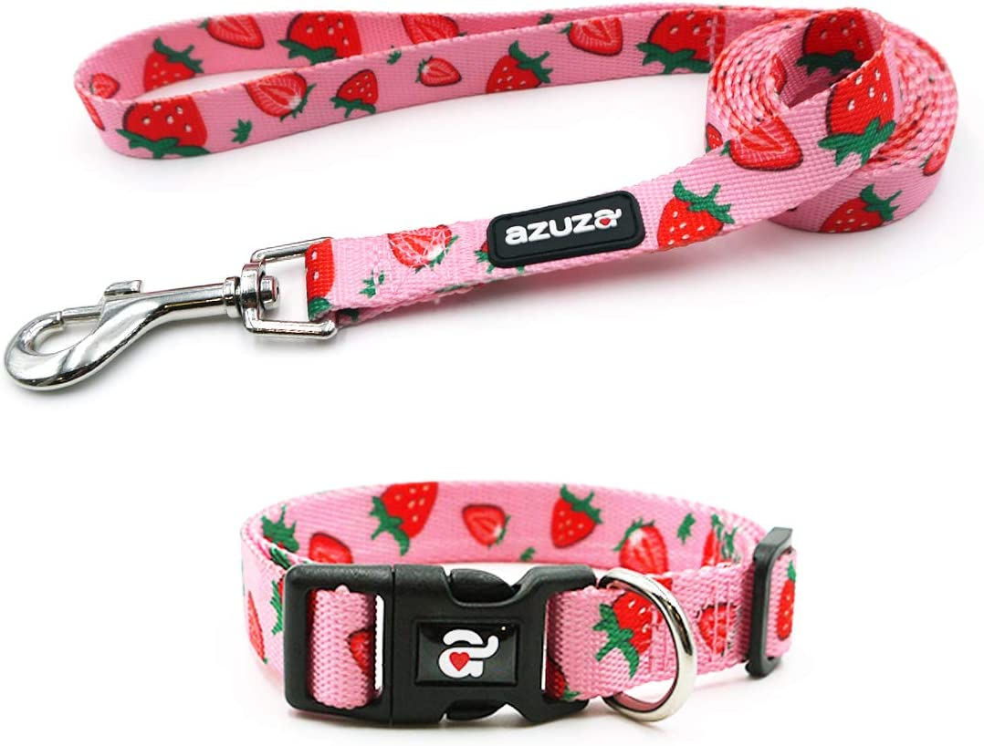 azuza Dog Collar and Leash Set, Cute Fruit Patterns, Adjustable Nylon Collar with Matching Leash for Small Medium and Large Dogs
