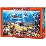 Castorland C-103751 Puzzle 1000 Teile Painted Ladies San Francisco