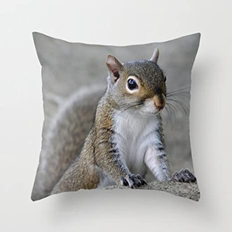 Amazon Com My Honey Pillow Case Squirrel Throw Pillow Cover By Charlene Mccoyfor Your Home 18 X 18 Inches Home Kitchen