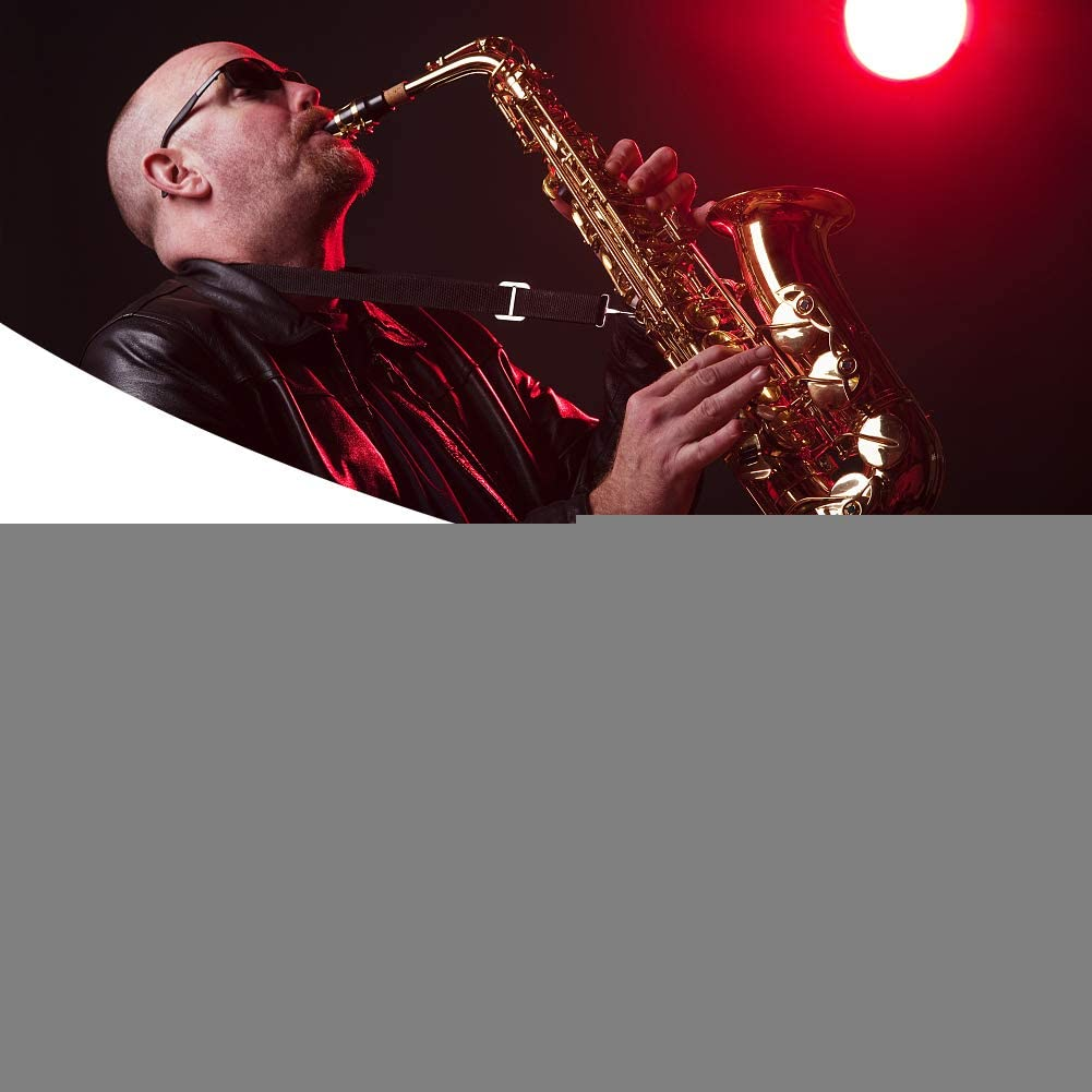 Drfeify Sourdine pour Saxophone Alto Accessoire pour Saxophone Alto
