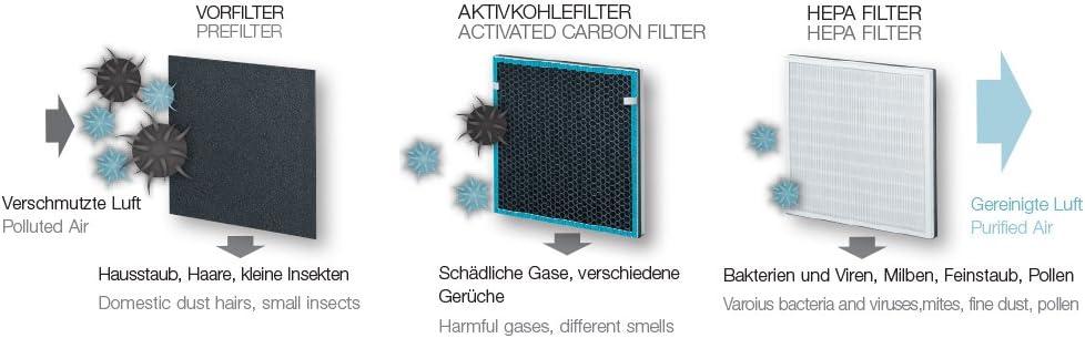Beurer Sistema de filtrado de repuesto para LR 200, 1 pieza ...