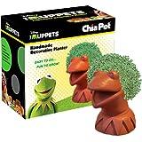 Chia Pet Planter, Kermit The Frog