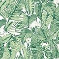 Tempaper Jungle Green Tropical | Designer Removable Peel and Stick Wallpaper