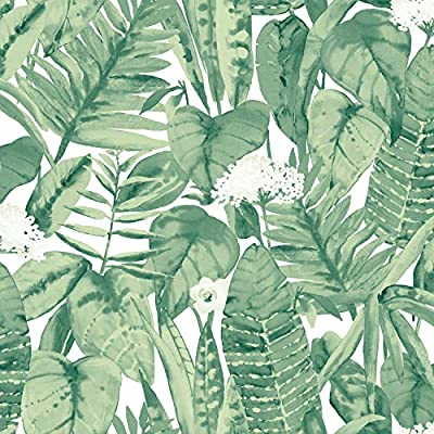 Tempaper Tr562 Tropical Removable Peel And Stick Wallpaper 20 5 X 16 5 Jungle Green Buy Online At Best Price In Uae Amazon Ae
