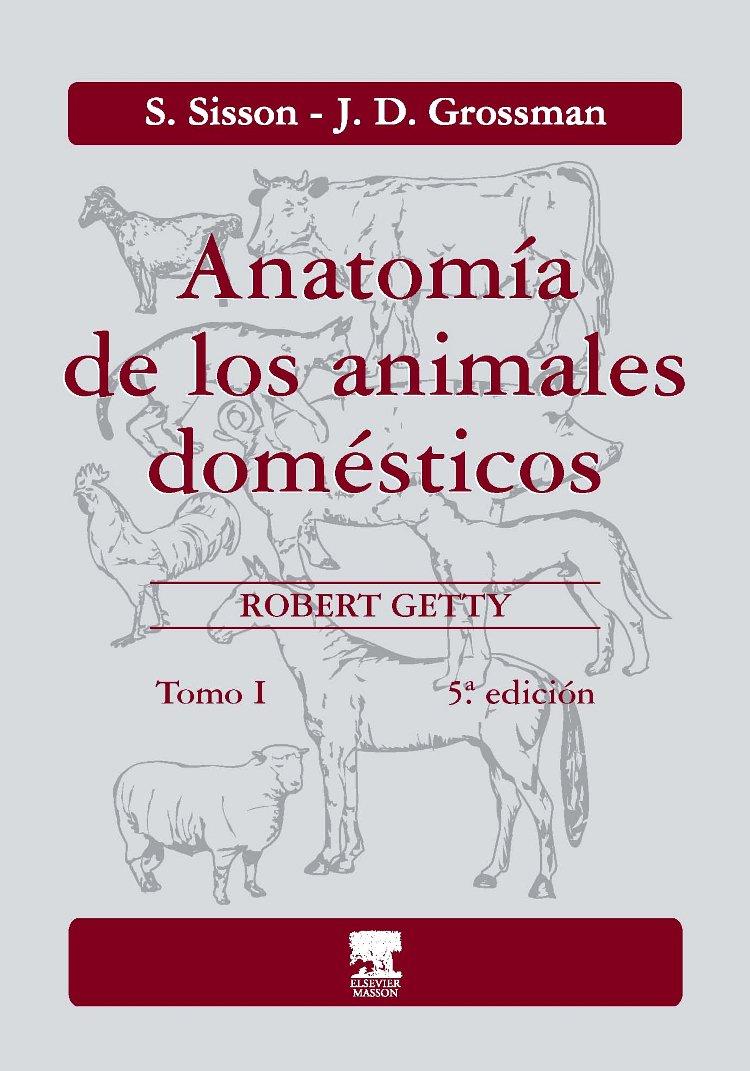 Anatomía de los animales domésticos. Tomo I: Amazon.es: S. Sisson ...