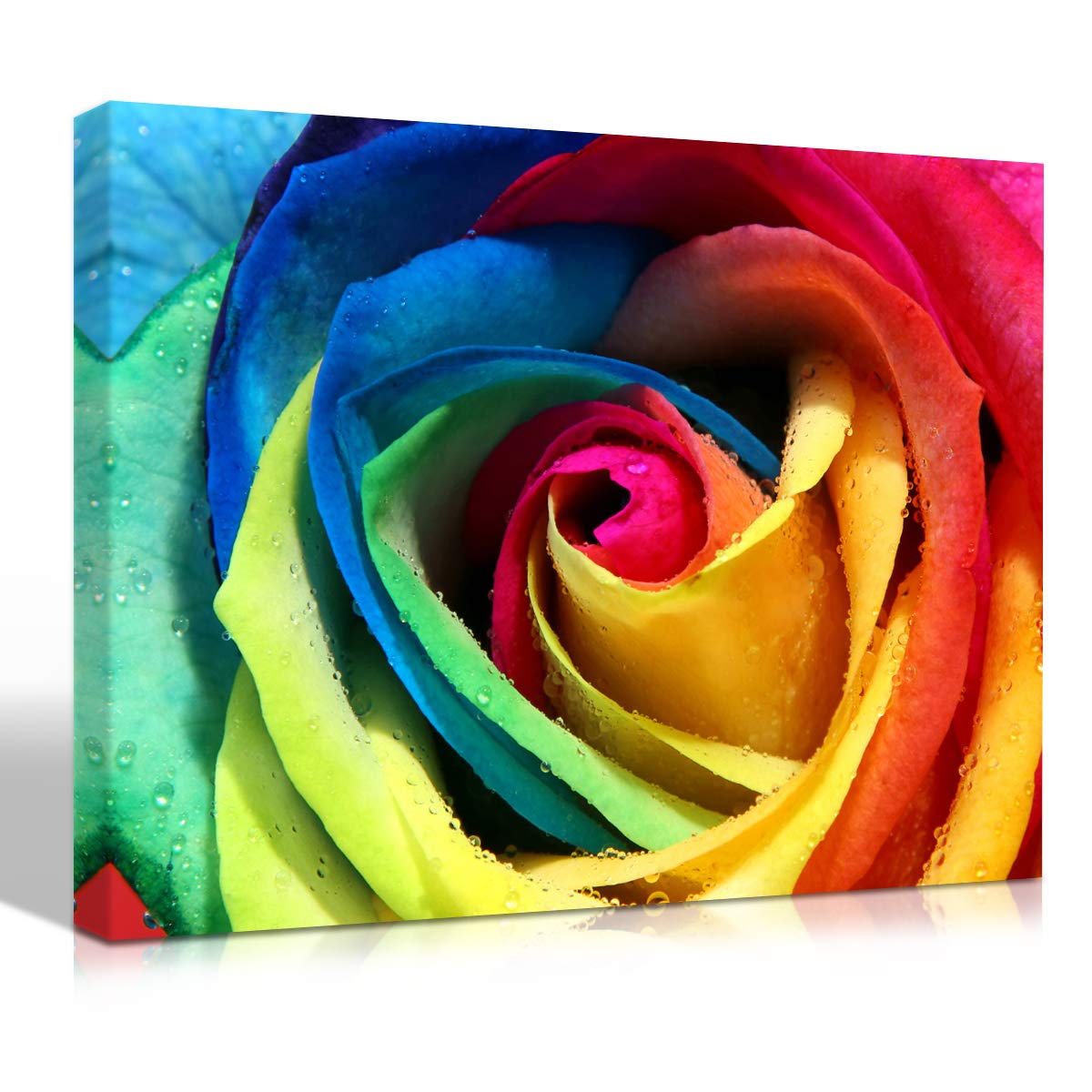 Mon Art Colorful Rose Print on Canvas Wall Art Rainbow Mixed Colors Roses Painting Multicolor Flower Picture Walls Decoration Floral Pictures Paintings Home Decor Framed Artwork 12x16 inch 1 Panel Set