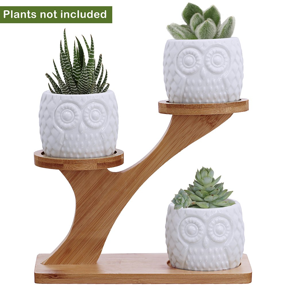 3pcs Owl Succulent Pots with 3 Tier Bamboo Saucers Stand Holder - White Modern Decorative Ceramic Flower Planter Plant Pot with Drainage - Home Office Desk Garden Mini Cactus Pot Indoor Decoration by besttoyhome (Image #1)