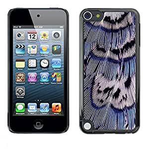 FECELL CITY // Duro Aluminio Pegatina PC Caso decorativo Funda Carcasa de Protección para Apple iPod Touch 5 // Bird Feathers Blue White Nature Easter