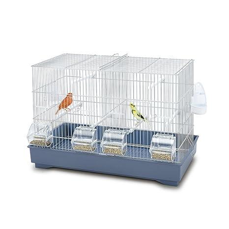 Imac - Jaula para pájaros Cova 55: Amazon.es: Productos para ...