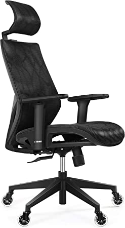 Tribesigns High Back Desk Chair with Lumbar Support