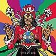 WORLD WIDE FUNK [CD]