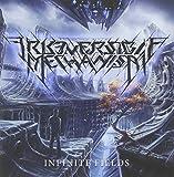 Infinite Fields by Irreversible Mechanism (2015-08-03)