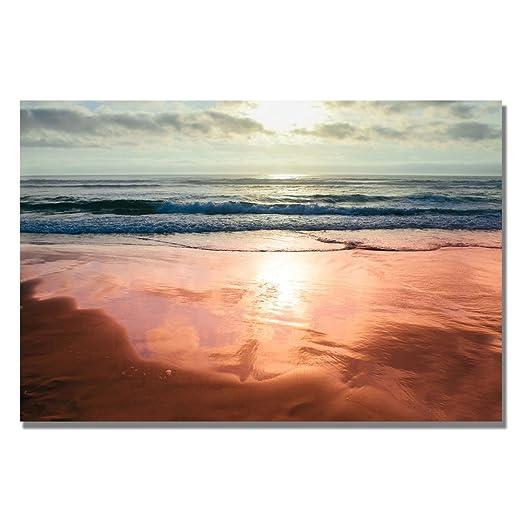Trademark Fine Art Costal Reflections IV by Ariane Moshayedi