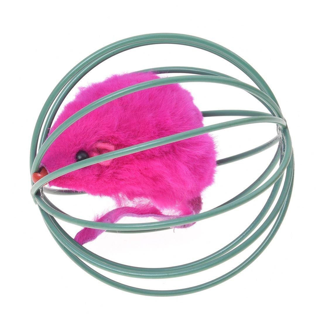 Homme Chat Rat Salle De Bain ~ jouet pour rat amazon fr