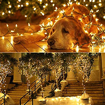 Brizled Faceted C6 LED String Lights, 100 Bulbs, 120V UL Certified, for Indoor and Outdoor Decoration, Patio and Christmas Tree