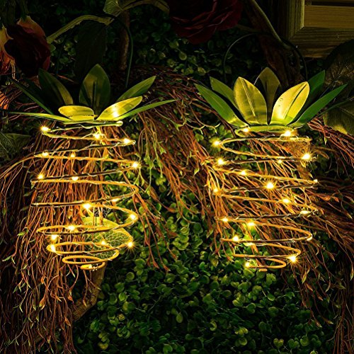 Pineapple Front Porch Lights in Florida - 9