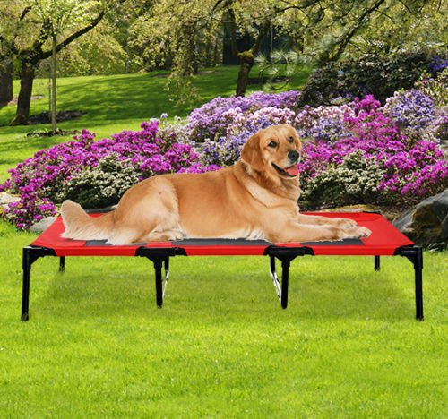 XLarge 48 Dog Pet Cat Elevated Raised Bed Puppy Cot Oxford Outdoor Indoor