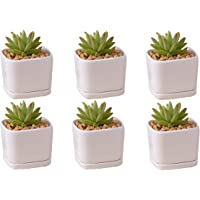 Mini 6 Set 2x1.65x2inch Square Modern Minimalist White Ceramic Succulent Mini Planter Pot/Window Box with Saucer (Square…