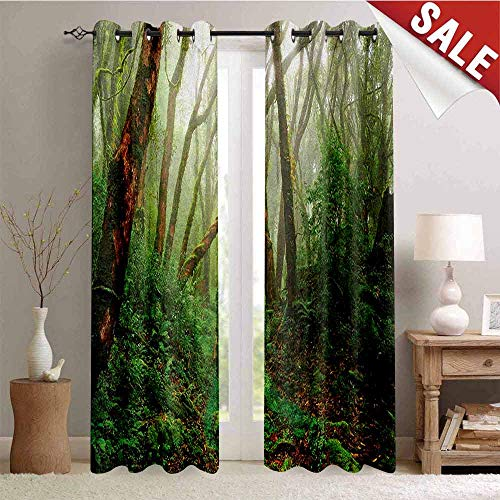 Forest, Window Curtain Fabric, Spooky Tropical Exotic Fog Jungle in Rainforest Nepal Asian Climate Picture Print, Drapes for Living Room, W96 x L96 Inch Green Brown