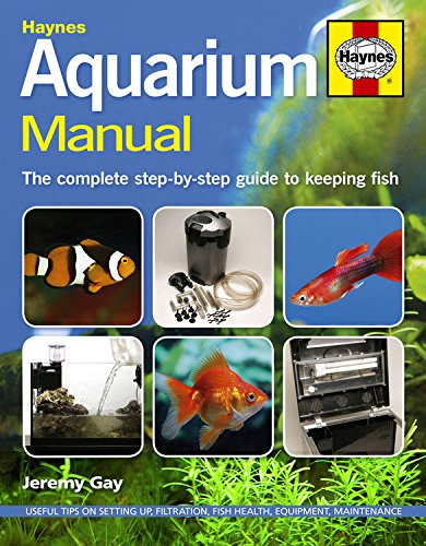 Complete Step-by-Step Guide to Keeping Fish (Keeping Fish)