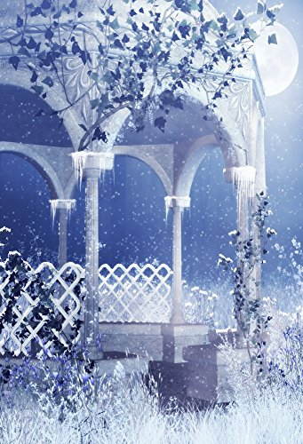 Laeacco Vinyl Thin Backdrop 5x7FT Photography Background Pavilion Pillars Winter Season Heavy Snow Night Moon Snowflakes Vine Scene Christmas Art Shooting Adult Kids Background (Winter Scene Backdrops)