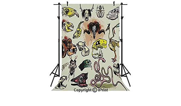 Modern 12x10 FT Vinyl Photo Backdrops,Animal Skeleton Icons Composition with Gothic Faces Dead Creatures Illustration Background for Selfie Birthday Party Pictures Photo Booth Shoot