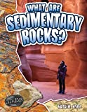 What Are Sedimentary Rocks?, Natalie Hyde, 0778772306
