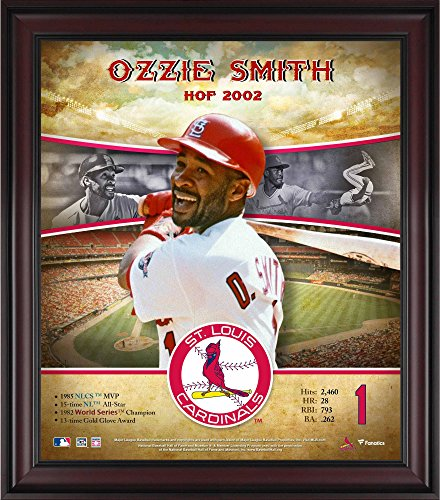 Ozzie Smith St. Louis Cardinals Framed 15