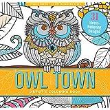 Amazon.com: Hello Angel Owls Wild & Whimsical Coloring