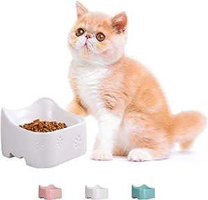 Jemirry Raised Cat Bowls Ceramic Cat Dish Bulldog Food Bowl for Cat Small Pup Dog Pet, Anti-Vomit cat Bowl
