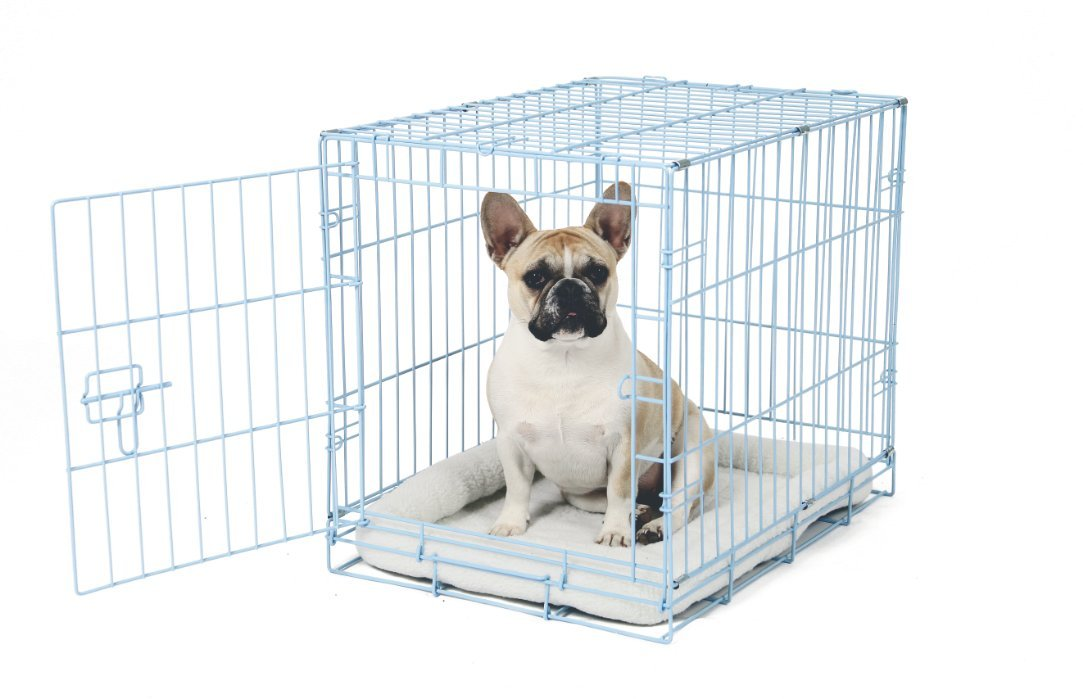 Carlson Blue Secure and Compact Single Door Metal Dog Crate, Small by Carlson Pet Products